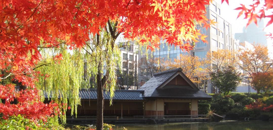 Hinokicho Park, Tokyo (article by amuzen)
