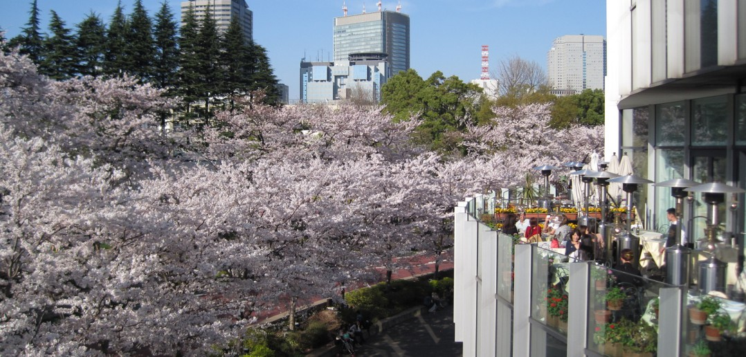 Tokyo Midtown (article by amuzen)