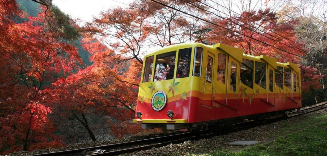 Mt Takao autumn leaves (article by amuzen)