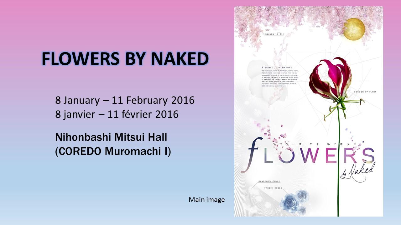 flowers by naked En Fr