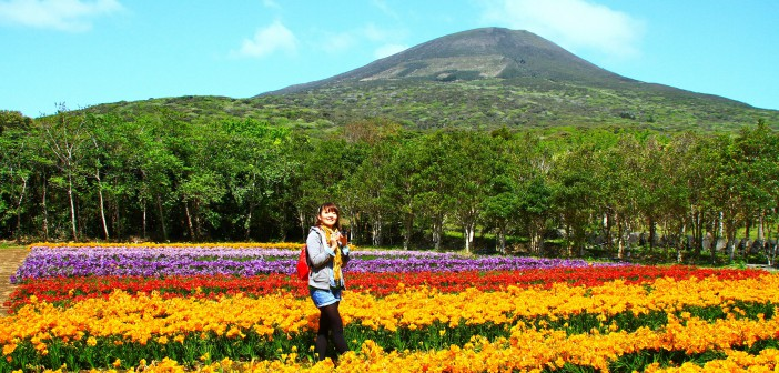 Hachijo-jima Freesia Festival 2016 (article by amuzen)