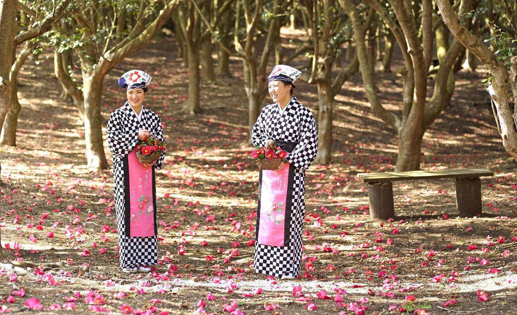 Izu Oshima Camellia Festival 2016