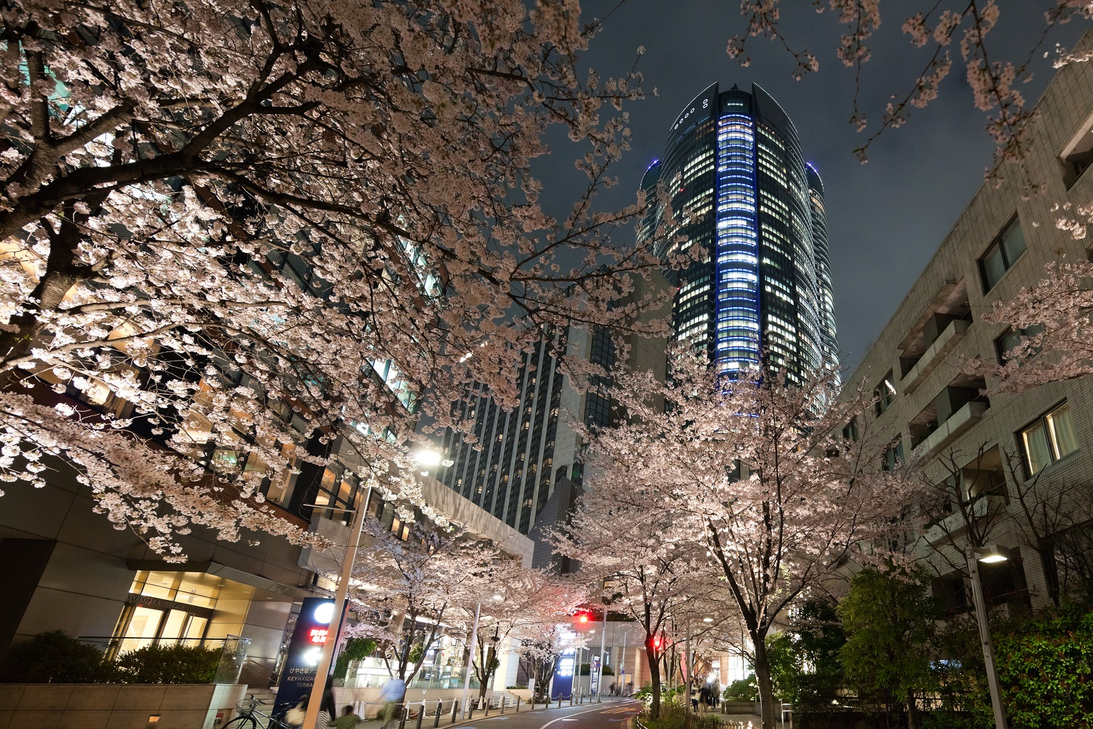 Roppongi Hills SPRING 2016 (article by amuzen) Tokyo guide events