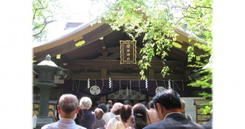 One-Thousand-Day Worship & Physalis Market at Atago Shrine (amuzen article)