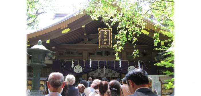 One-Thousand-Day Worship & Physalis Market at Atago Shrine (amuzen article)