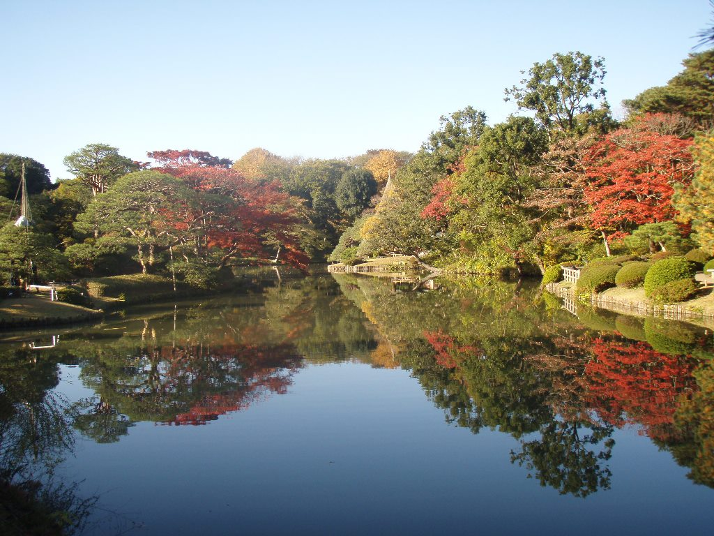 Lighting-up of autumn foliage 2016 at Rikugi-en Garden (amuzen article)