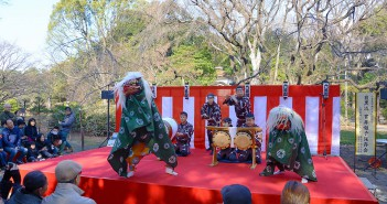 Celebrate New Year 2017 at Rikugi-en Garden (amuzen article)