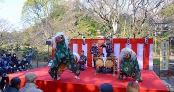 Celebrate New Year 2017 at Rikugi-en Garden (amuzen article)
