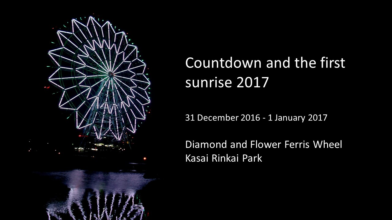 Countdown 2017 at Diamond and Flower Ferris Wheel