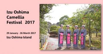 Izu Oshima Camellia Festival 2017 (amuzen article)