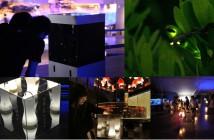 The Night of Fireflies at the Sumida Aquarium (amuzen article)