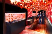 Tokyo Goldfish Wonderland at Sumida Aquarium (amuzen article)