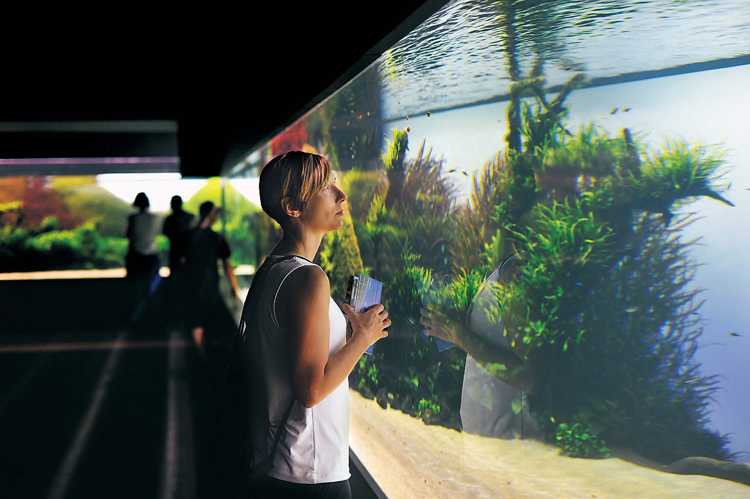 """Underwater Forest"" at the Lisbon Oceanarium"