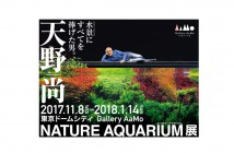 "Amano Takashi ""Nature Aquarium"" Exhibition (amuzen article)"