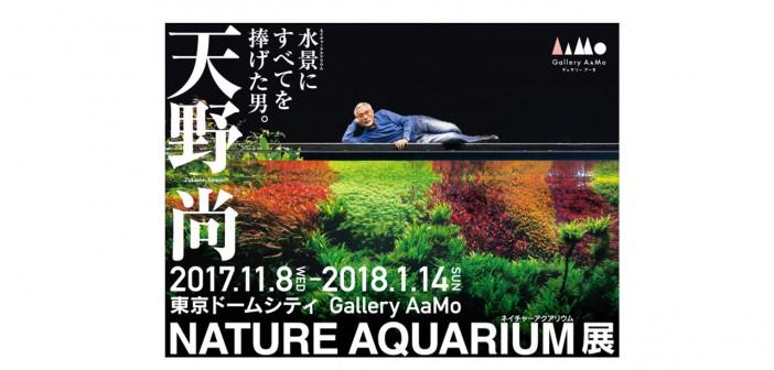 "Amano Takashi ""Nature Aquarium"" Exhibition (amuzen article)"