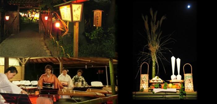 Moon viewing w017 at Mukojima Hyakkaen (amuzen article)