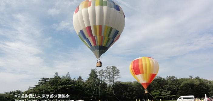 Yoyogi Park's 50th anniversary events (amuzen article)