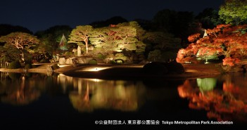 Lighting of autumn foliage 2017 at the Rikugi-en Garden