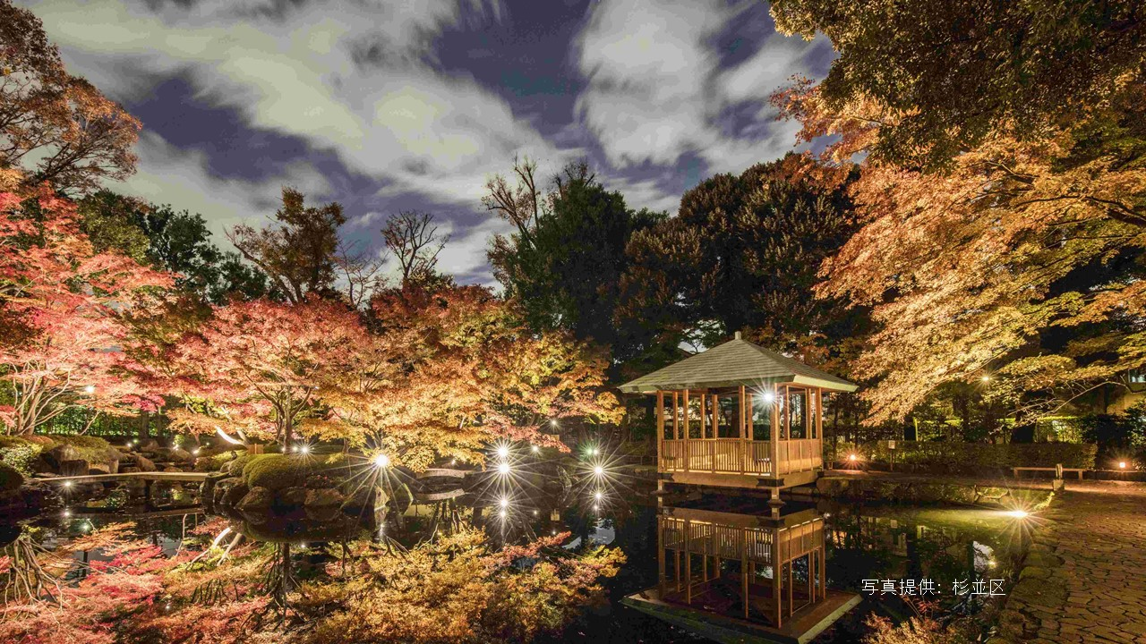 PHoto courtesy: Suginami City, Tokyo