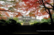 Autumn 2017 in the Kyu-Furukawa Garden (amuzen article)