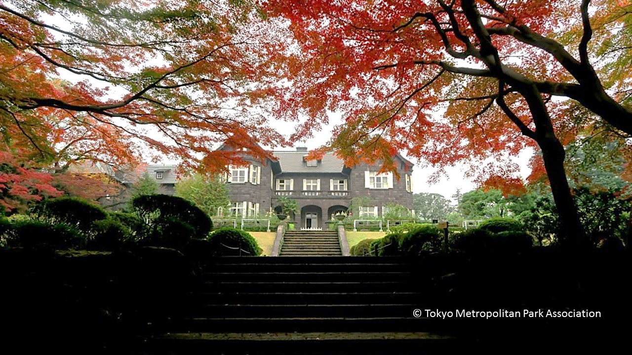 Autumn 2017 in the Kyu-Furukawa Garden (amuzen article)