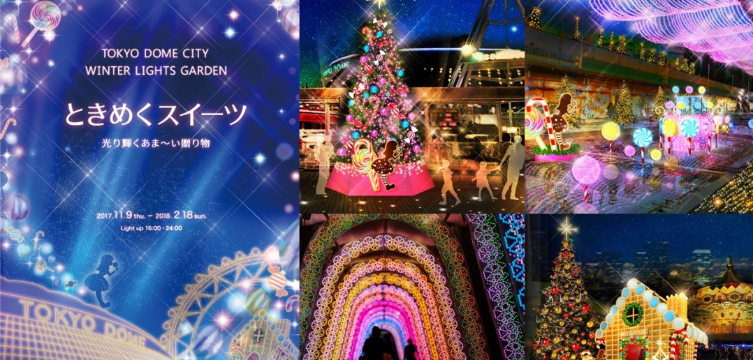 Tokyo Dome City Winter Lights Garden (amuzen article)