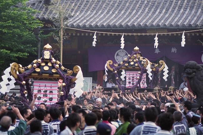 sanja festival 2
