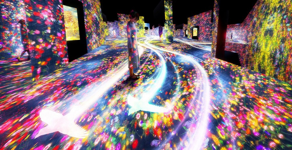 "Digital art museum ""teamLab Borderless"""