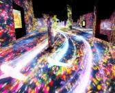 """Digital art museum """"teamLab Borderless"""""""