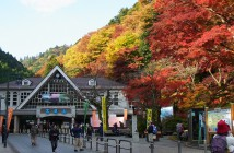 Mount Takao Fall Foliage Festival 2018