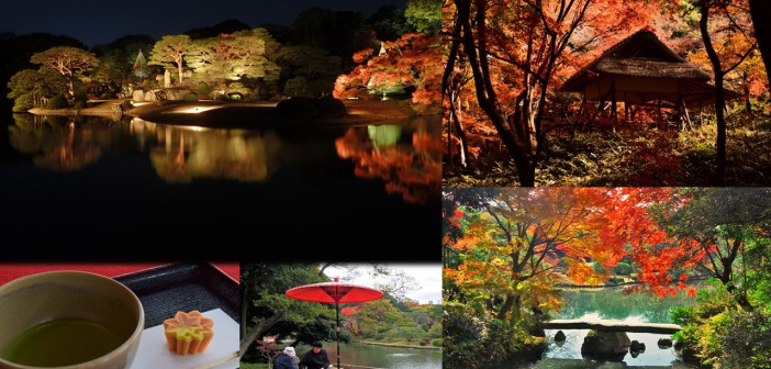 Lighting of fall foliage 2018 at the Rikugi-en Garden