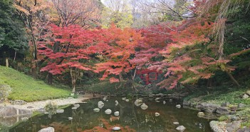 Autumn leaves 2018 at Koishikawa Korakuen Garden