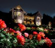 Spring Rose Festival at Kyu-Furukawa Teien