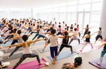 Yogafest Yokohama 2019