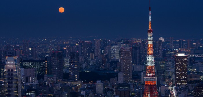 Autumn moon viewing at Roppongi Hills
