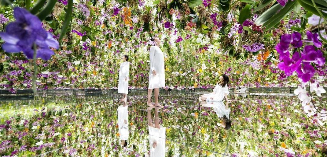 teamLab Planets: two art gardens|amuzen Tokyo